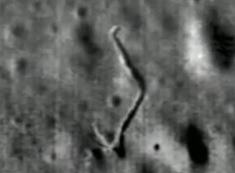 月面のワーム