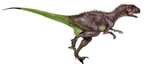 ノアサウルス写真01