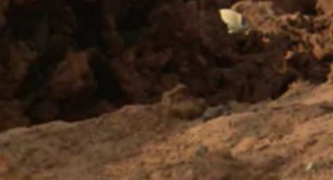 火星の謎の物体08