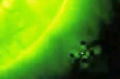 太陽近くのUFO画像04